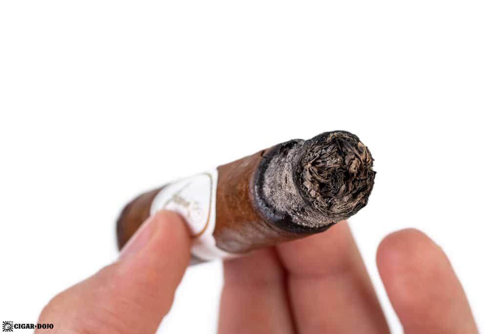 Davidoff Robusto Real Especiales 7 cigar ash