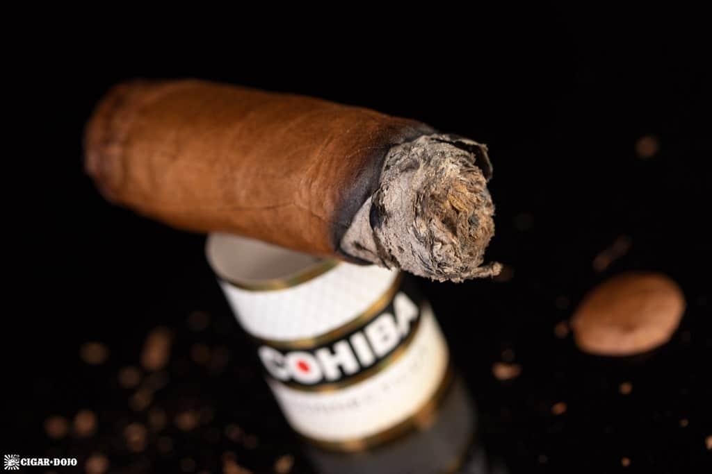 Cohiba Connecticut Robusto cigar nub finished