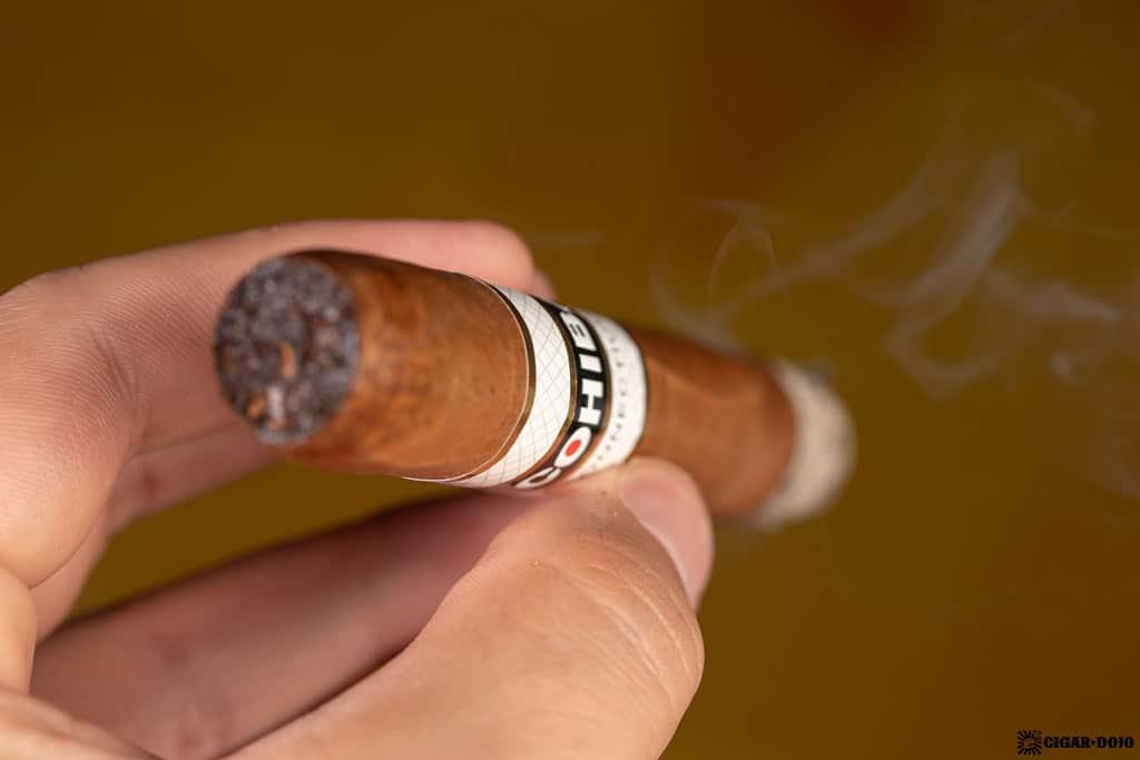 Cohiba Connecticut Robusto cigar smoking