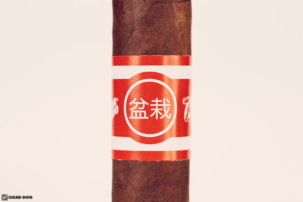 Bonsai cigar band
