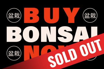 Bonsai cigars sold out