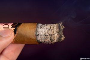 Southern Draw Desert Rose cigar ash