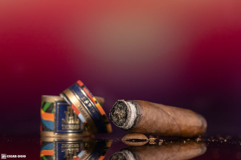 Trinidad Espiritu Fundador cigar nub finished