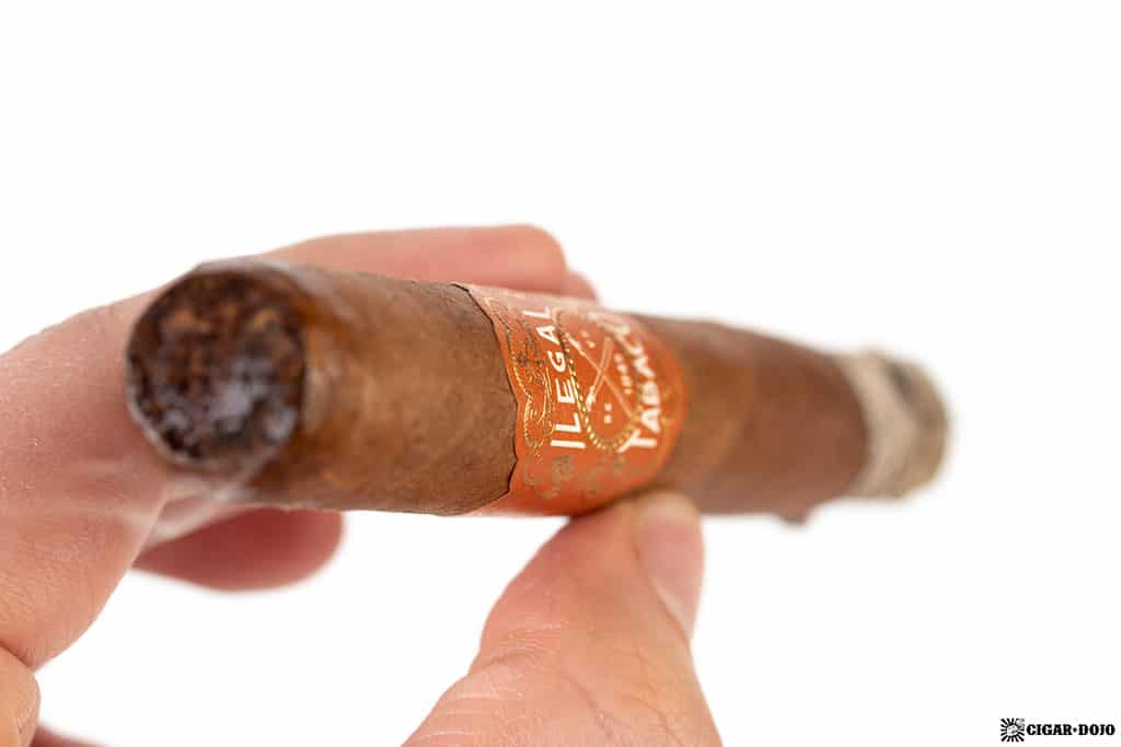 La Familia Robaina Ilegal Habano Toro cigar smoking