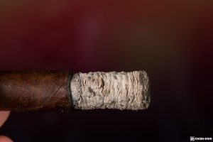 Dunbarton Mi Querida Triqui Traca No. 648 cigar ash