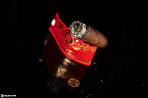 Punch Chop Suey cigar nub finished