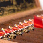 HVC 500 Years Anniversary cigars in box