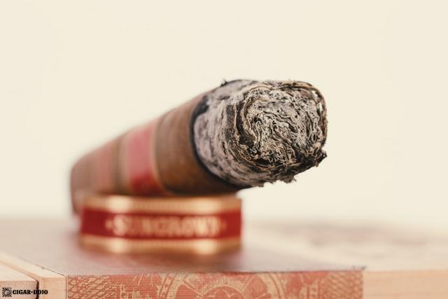 Drew Estate Undercrown Dogma Sun Grown cigar ash closeup