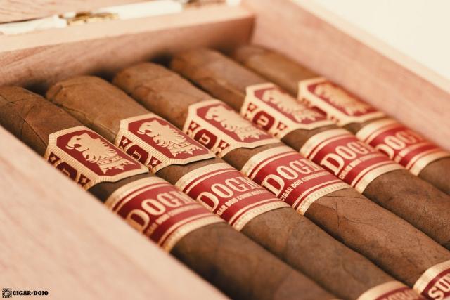 Drew Estate Undercrown Dogma Sun Grown cigars open box
