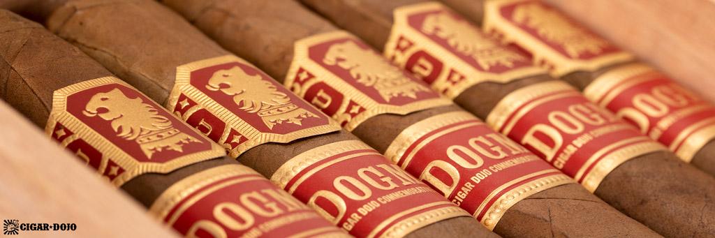 Undercrown Dogma Sun Grown cigars in box