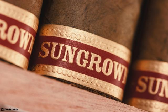 Drew Estate Undercrown Dogma Sun Grown cigar foot band