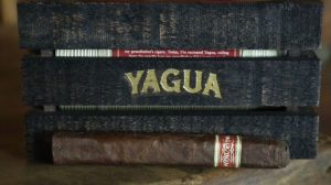J.C. Newman Yagua cigar and box
