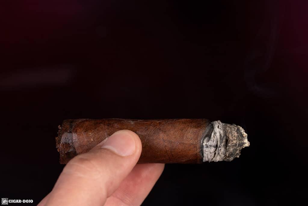 Cohiba Royale Toro cigar ash