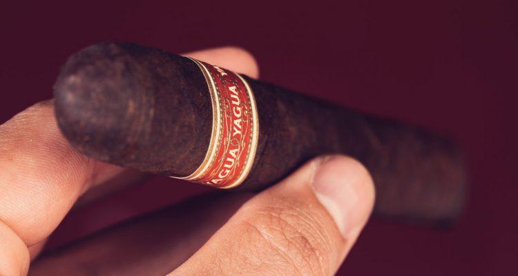 J.C. Newman Yagua cigar review