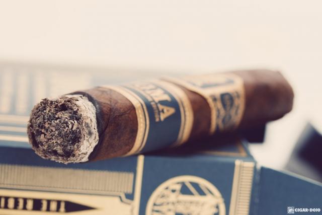 Drew Estate Undercrown Dojo Dogma Maduro 2020 cigar closeup