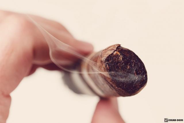Drew Estate Undercrown Dojo Dogma Maduro 2020 cigar head smoking