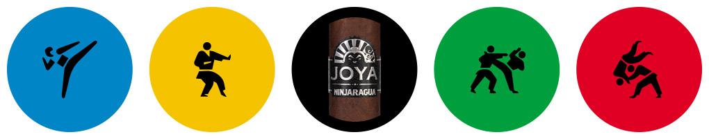 Cigar Olympics Karate Joya Ninjaragua cigar